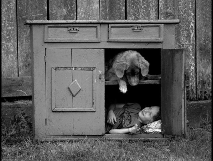 photo chien et enfant