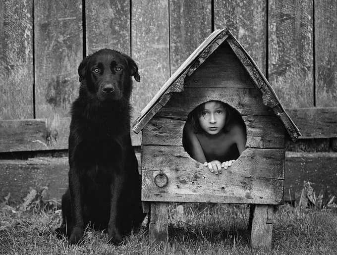 photo chien et enfant dans une niche