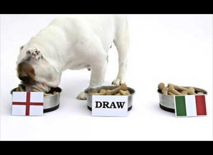 un chien pronostic les équipes de football