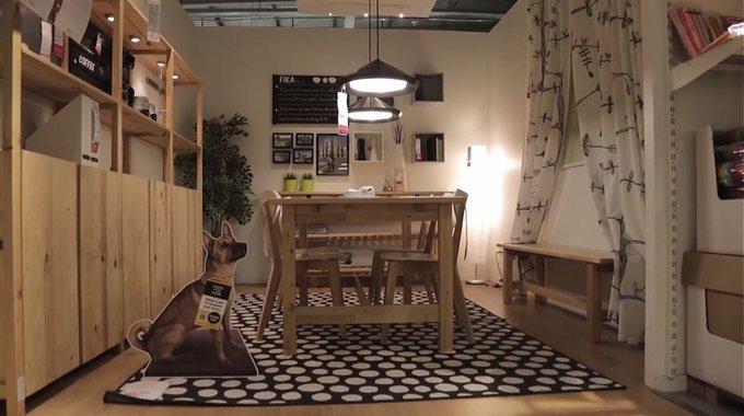 Campagne IKEA pour l'adoption