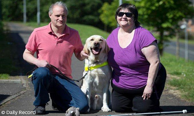 Le couple d'aveugle et son chien