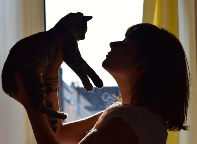 Chachou et puce illustrent l'adoption