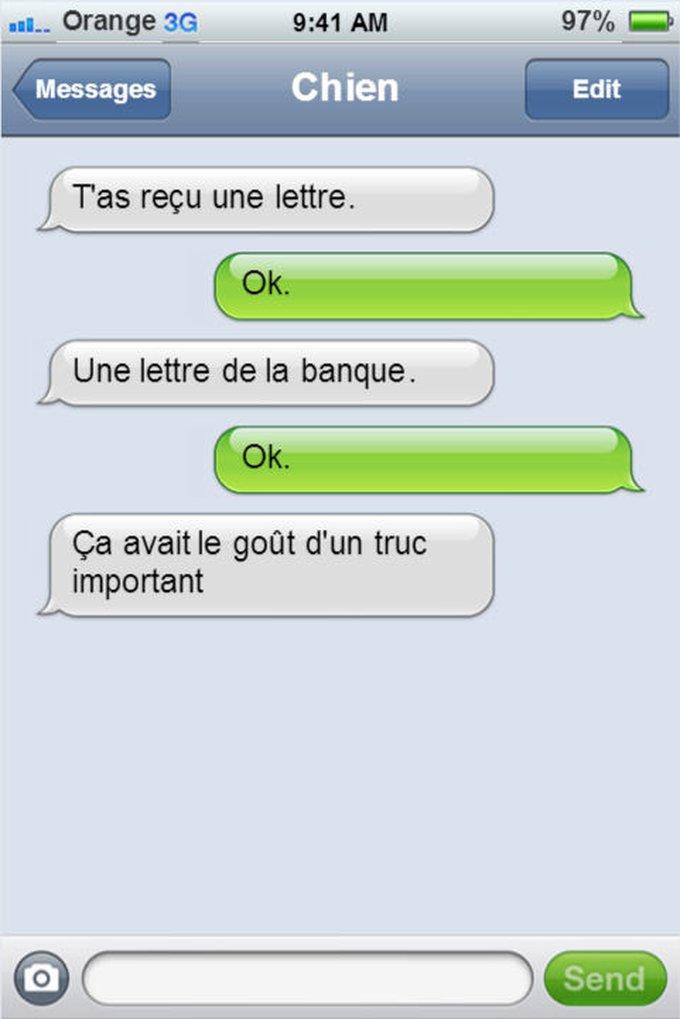 blog_yummypets_textos_chien_enfant_10_2014_15