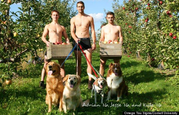blog_yummypets_calendrier_veterinaires_2_12_2014