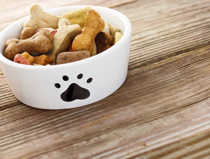 blog_yummypets_recette_biscuits_cannelle_12_2014