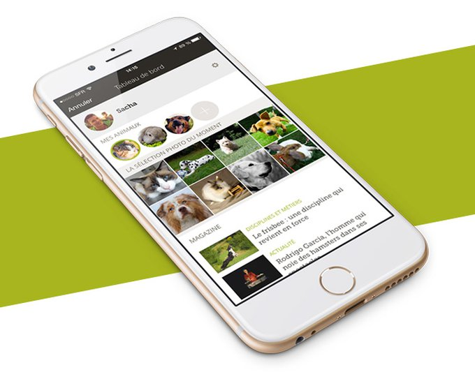 blog_yummypets_applications_mobiles_04_2015