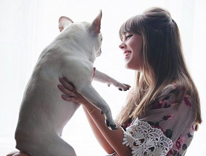 blog_yummypets_doggyguard_article_2_08_2015