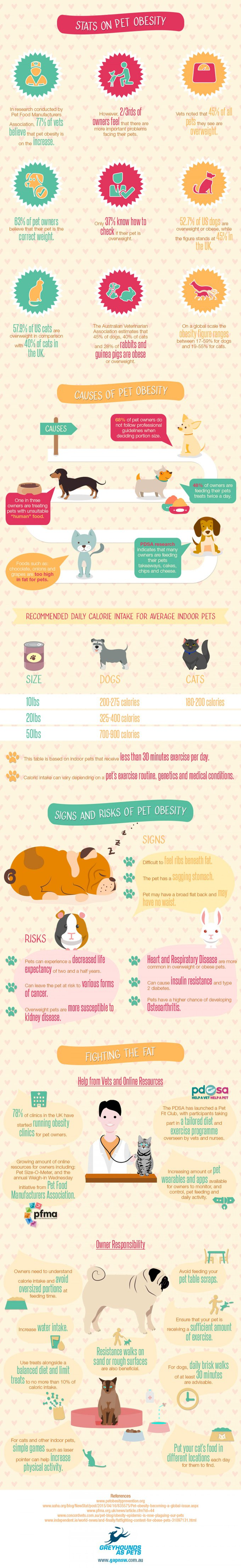 blog_yummypets_pet_obesity_08_2015