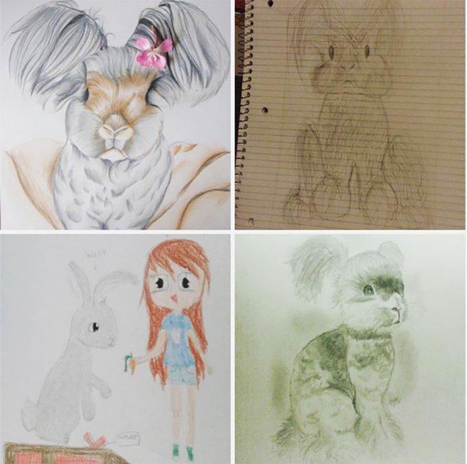 blog_yummypets_wally_bunny_6_09_2015