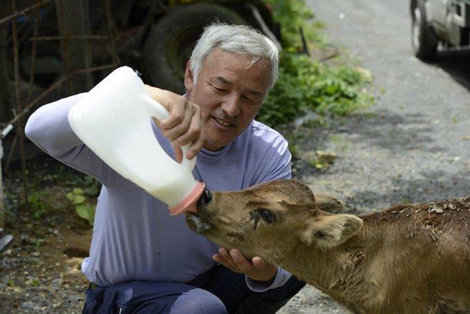 blog_yummypets_le_gardien_des_animaux_de_fukushima_02_10_2015