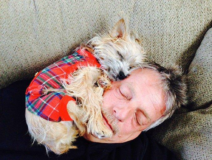 blog_yummypets_10_chiens_qui_n_ont_pas_compris_la_notion_d_espace_personnel_05_11_2015