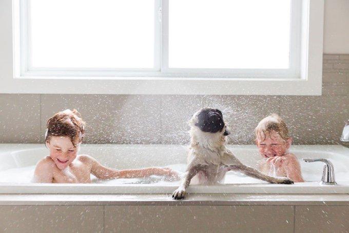 blog_yummypets_des_enfants_et_des_animaux_03_12_2015