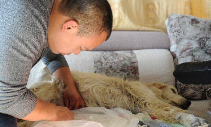 blog_yummypets_il_consacre_sa_fortune_à_sauver_des_animaux_02_12_2015