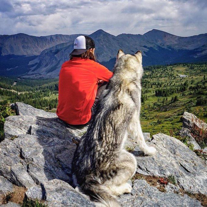 blog_yummypets_il_emmene_son_chien_dans_des_aventures_extraordinaires_08_12_2015