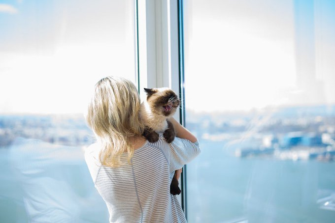 blog_yummypets_ils_photographient_les_chats_celebres_et_leur_maitre_17_12_2015