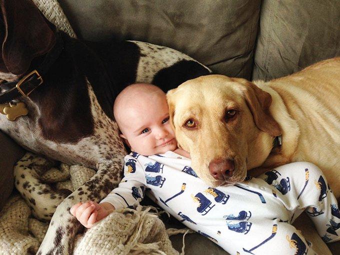blog_yummypets_votre_enfant_a_besoin_dun_chien_19_12_2015