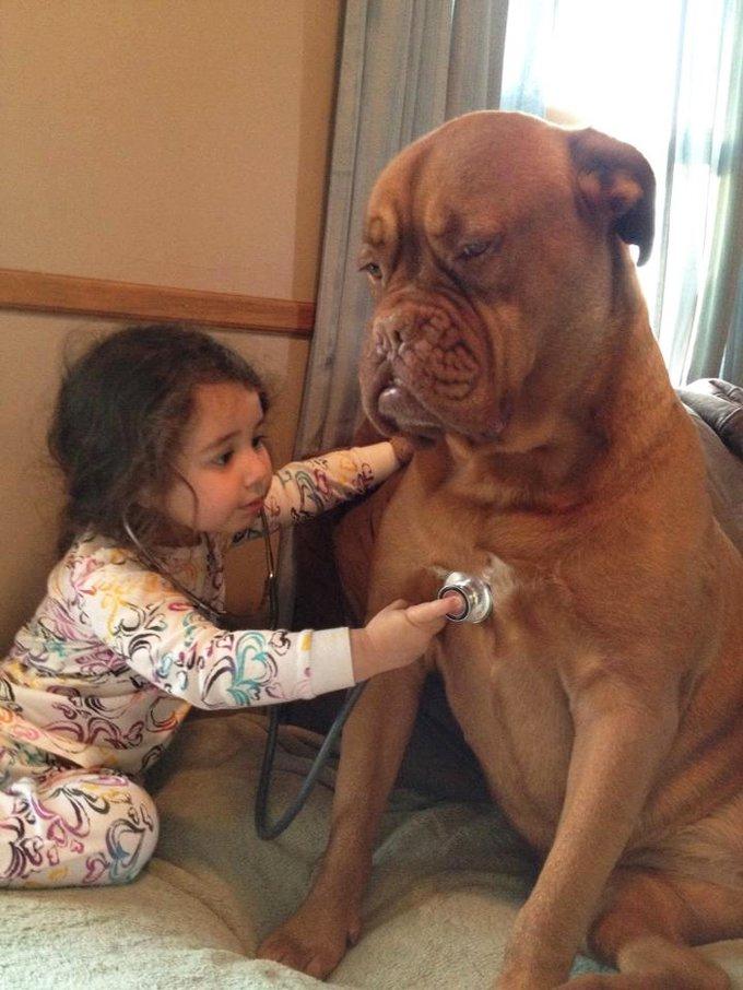 blog_yummypets_votre_enfant_a_besoin_dun_chien_2_12_2015