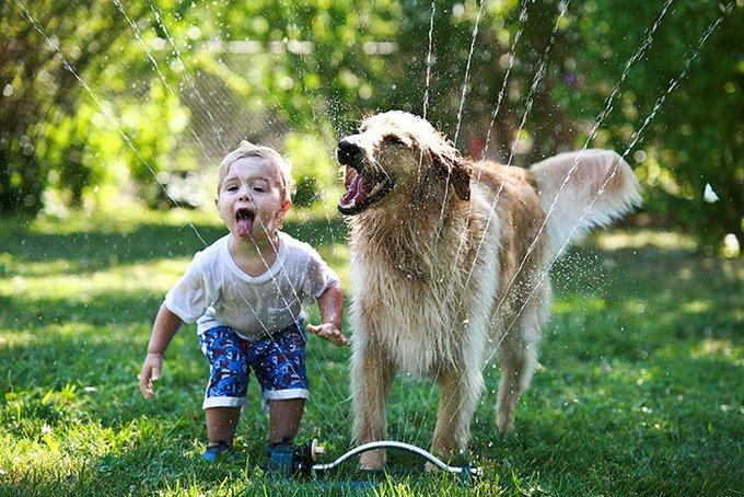 blog_yummypets_votre_enfant_a_besoin_dun_chien_3_12_2015