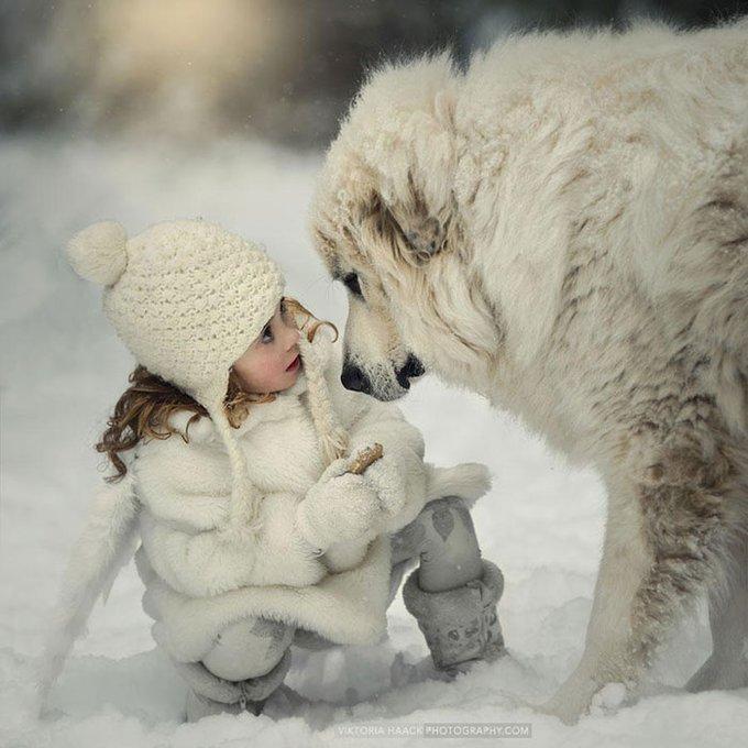blog_yummypets_votre_enfant_a_besoin_dun_chien_6_12_2015