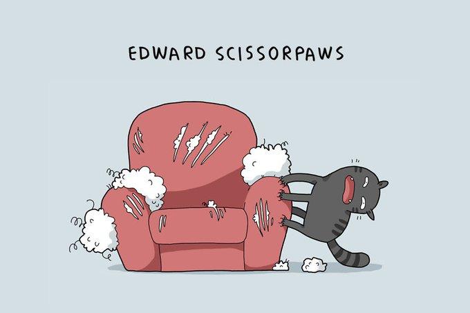 10 types de chats : Edward aux pattes d'argent