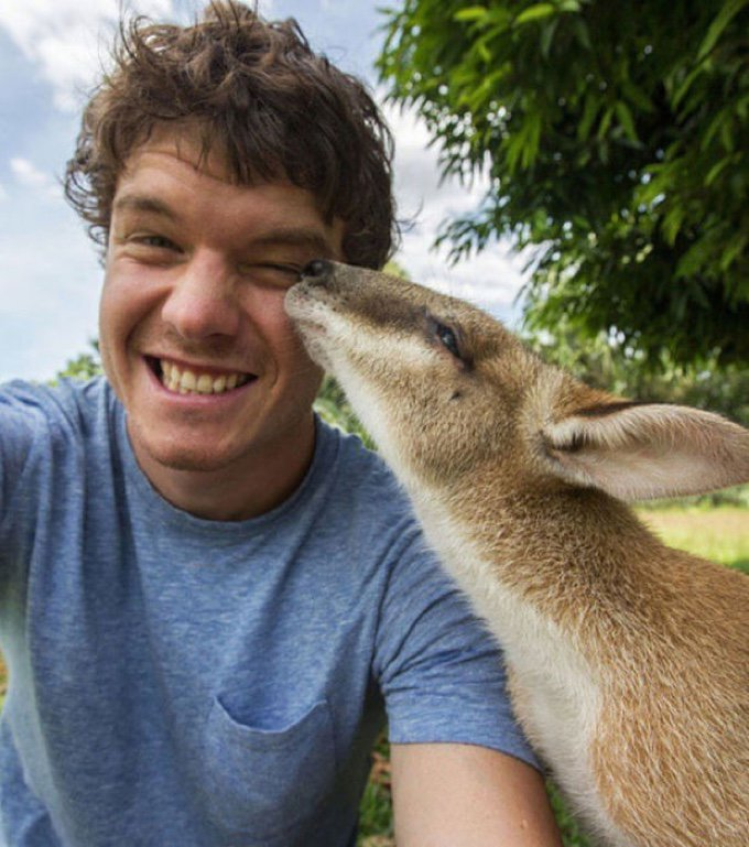 selfie kangourou bisou