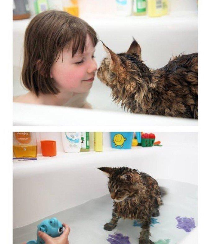 Un chat et une enfant dans le bain