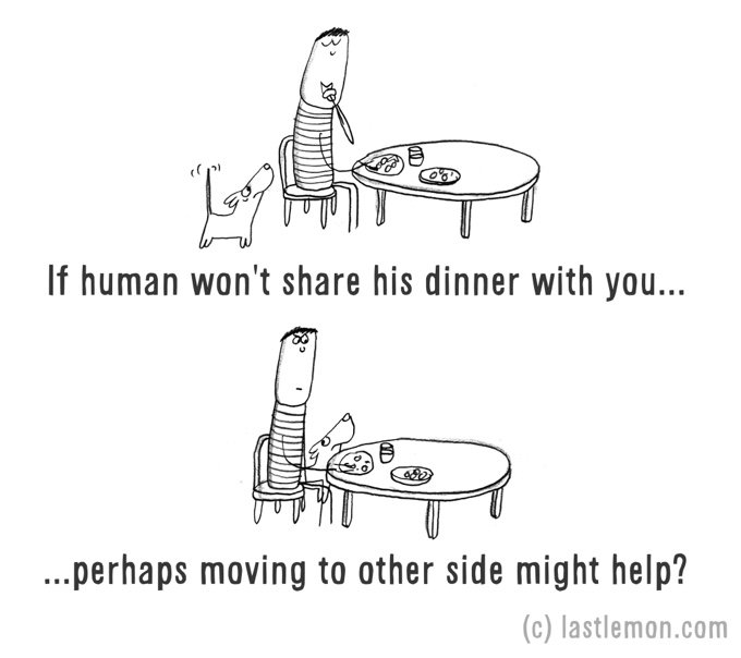 chien mendie nourriture dessin humour