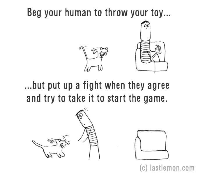 chien jouet jeu dessin humour