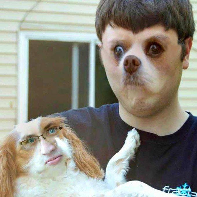 face_swaps_chien_maitre_6_02_2016