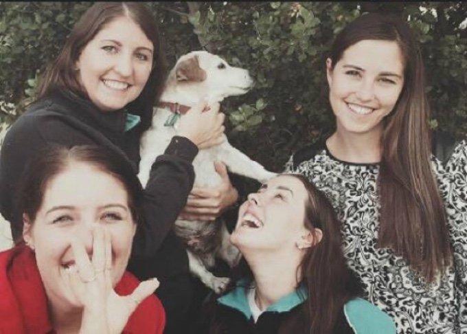 soeurs photo jack russel terrier