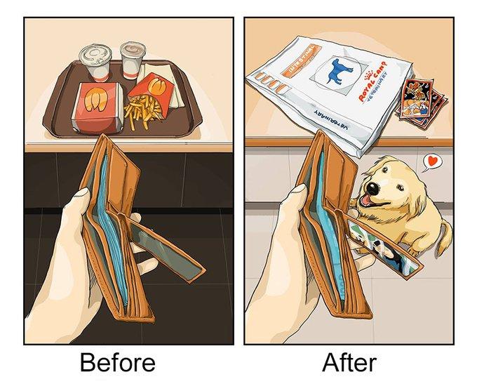 Dépenses : avant et après l'adoption d'un chien