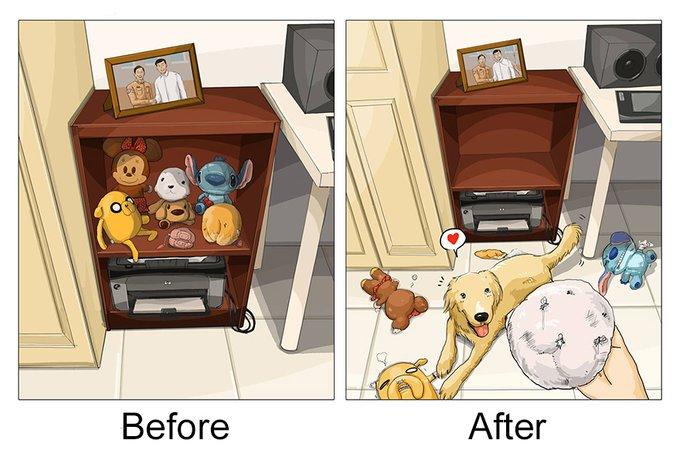 Décoration d'intérieur : avant et après l'adoption d'un chien