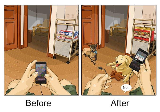 Hobbies : avant et après l'adoption d'un chien