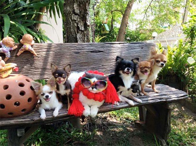 La Yutafamily se prélasse sur un banc