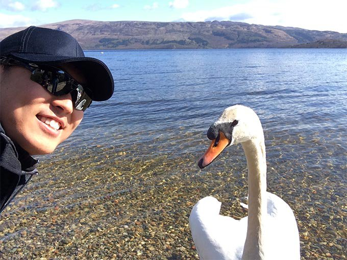 best selfie with a swan