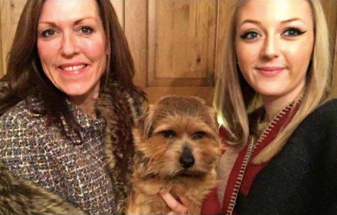 dog-selfie-07-03-2016