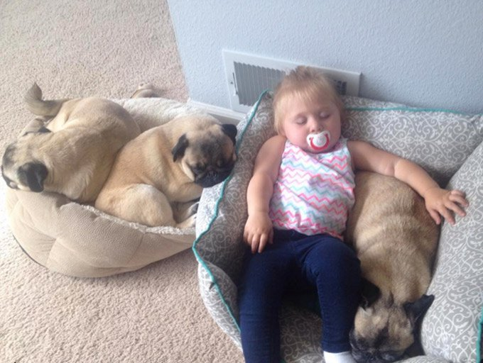 girl_loves_puppy_siblings_2_03_2016