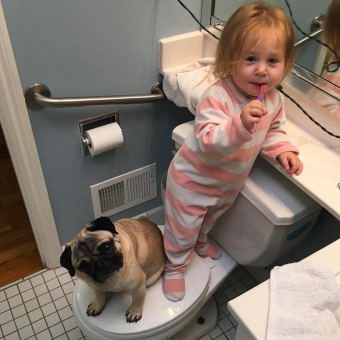 girl_loves_puppy_siblings_5_03_2016