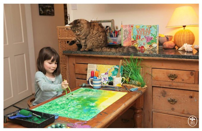 iris grace thula peinture chat