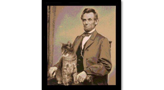 abraham lincoln con gato