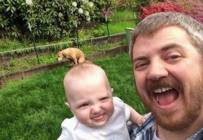 Bébé chien lol