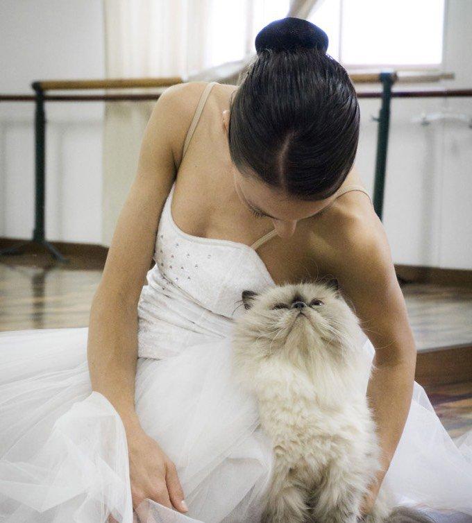 chat avec une danseuse