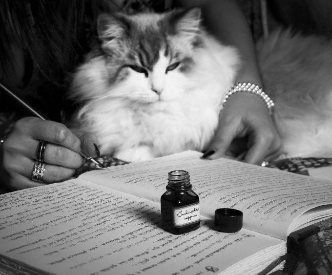 chat avec une écrivaine