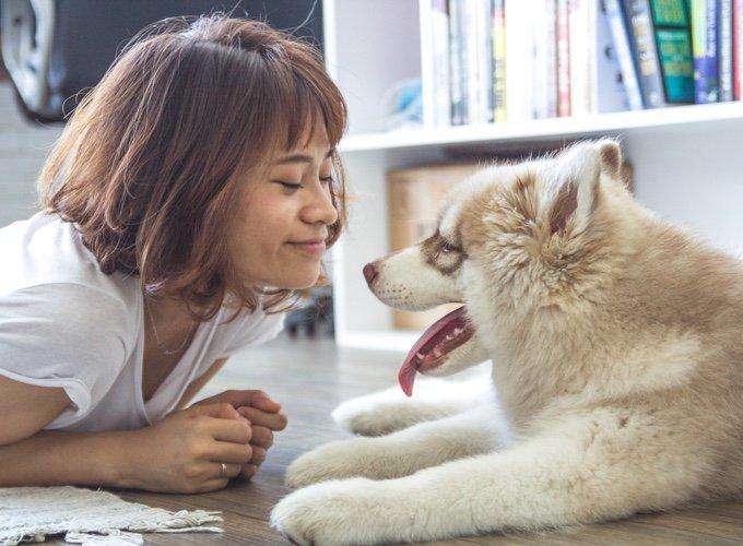 chien et sa maitresse