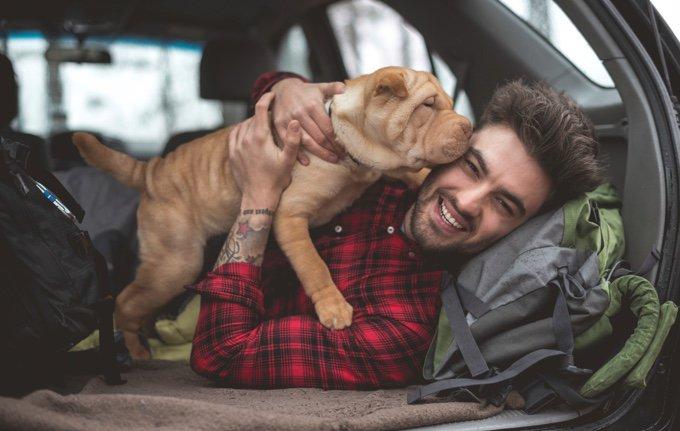 chien qui lèche son maître dans la voiture