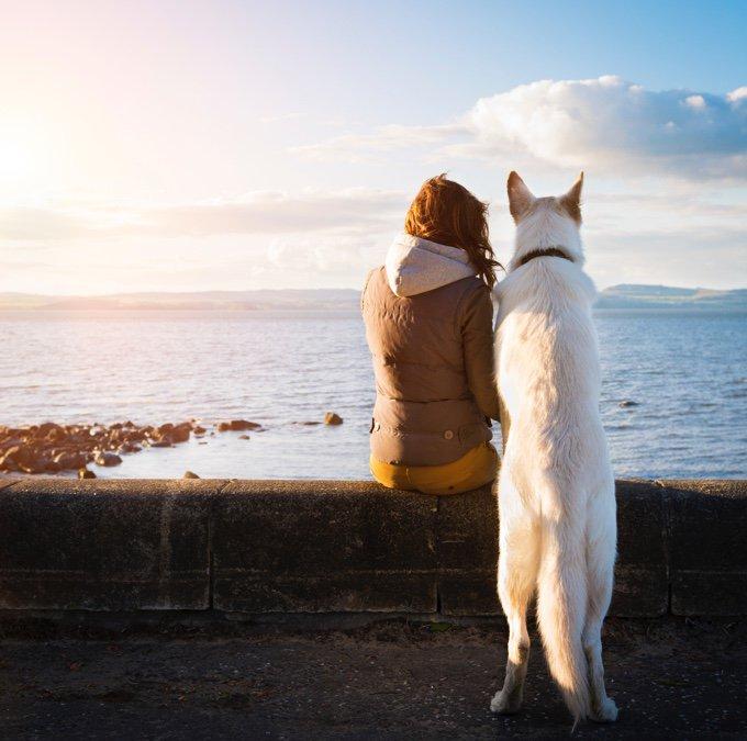 femme qui promène son chien en bord de mer