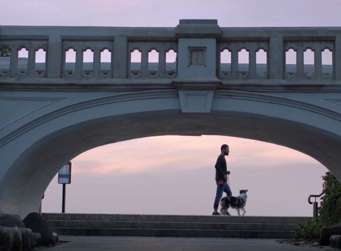 homme promenant son chien sous un pont