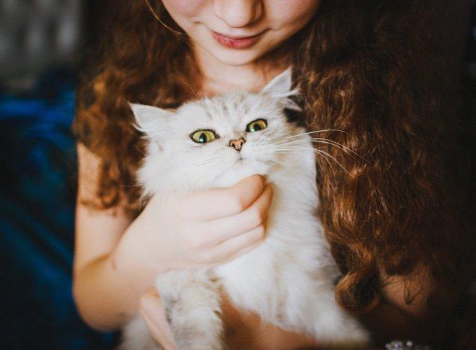 chat dans les bras de sa maîtresse