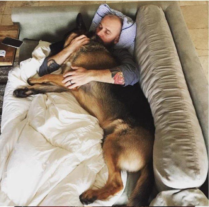 câlin entre un chien et son maître dans le canapé