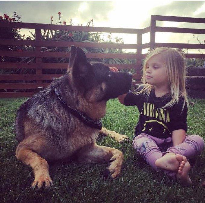 petite fille caresse un berger allemand dans le jardin